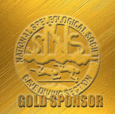2017 Conference Sponsor – Gold