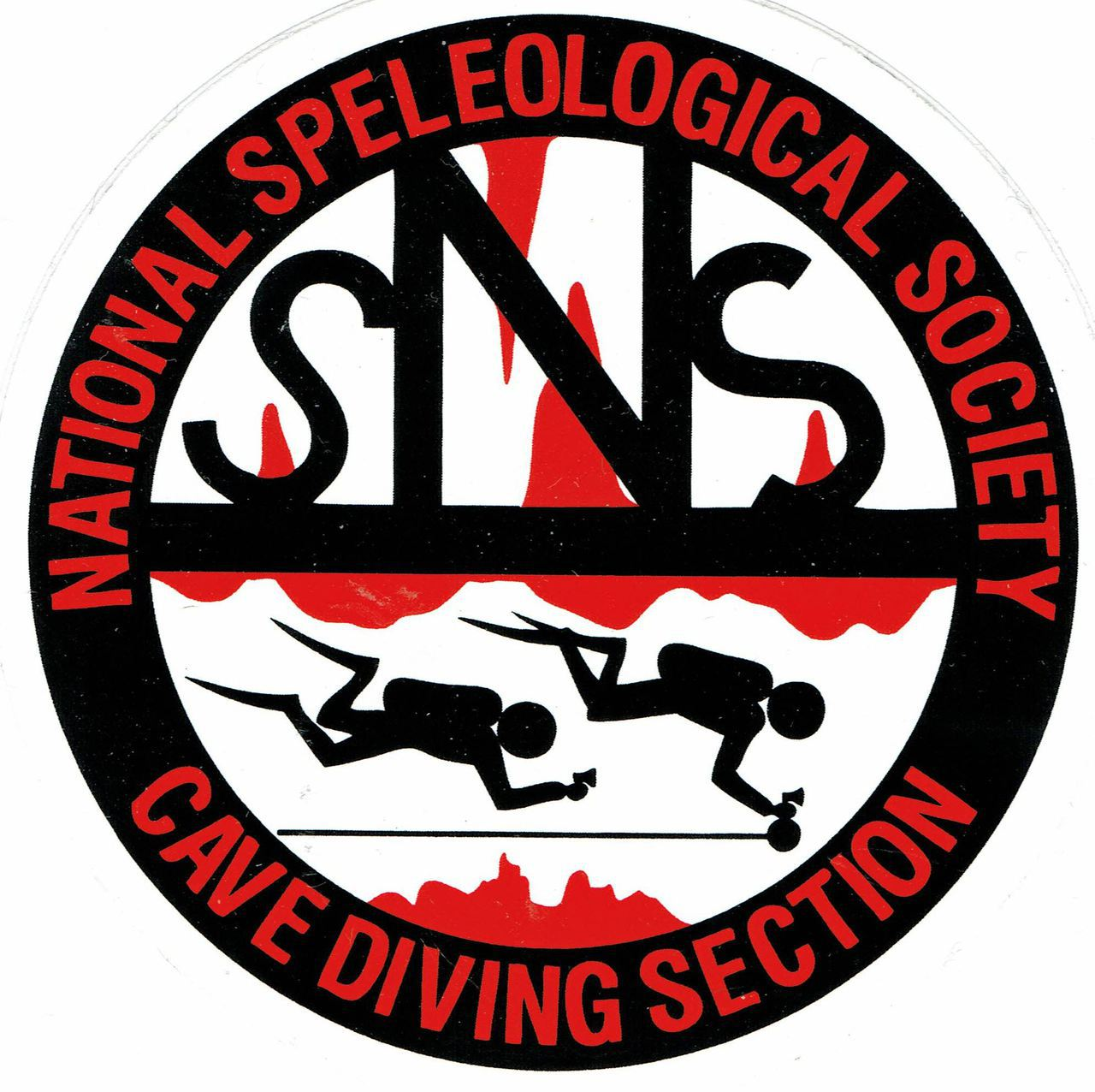 Sticker - NSS/CDS Logo